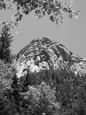 Photograph - Lily Rock In Black And White by Glenn McCarthy Art and Photography