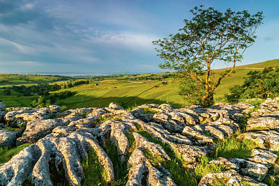 Limestone Pavement, Malham Cove Art Print by David Ross