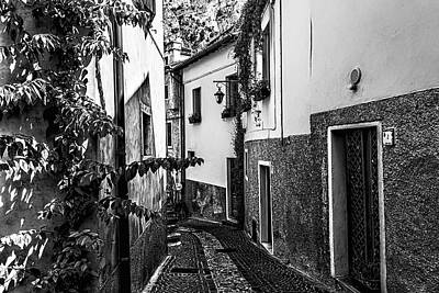 Lovely Lavender - Limone Back Streets Mono by Steve Purnell and Andrew Cooper