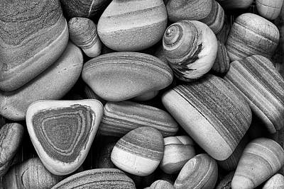 Photograph - Lined Rocks And Shell by John Rodrigues