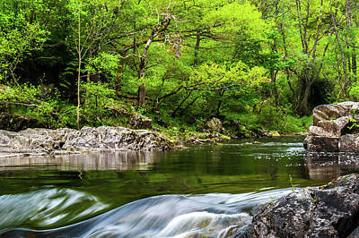 Linn Of Tummel Art Print by David Ross