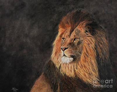 Drawing - Lion At Sunrise by Sheryl Elen
