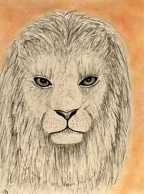 Animals Drawings - Lion by Gina DElia