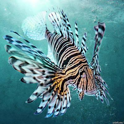 Photograph - Lionfish by Weston Westmoreland