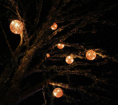 Photograph - lit up for Christmas by Perggals - Stacey Turner