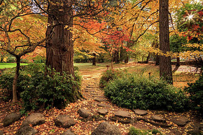 Photograph - Lithia Park Path by James Eddy