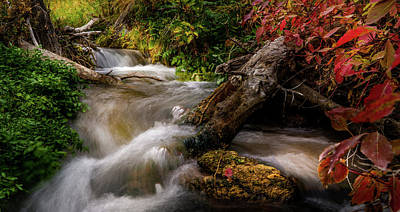 Photograph - Little Deer Creek Autumn by TL Mair