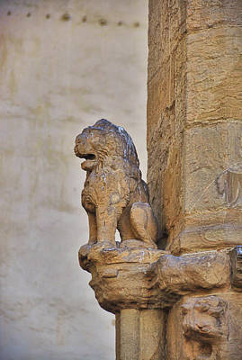 Photograph - Little Firenze Lion by JAMART Photography