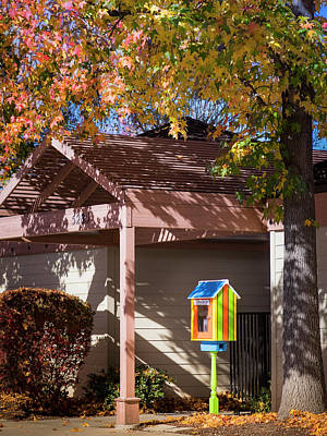 Photograph - Little Library by Mark Mille