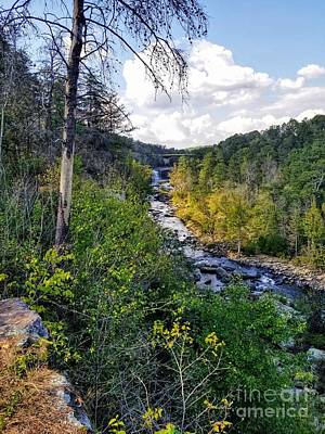 Photograph - Little River Canyon Alabama by Rachel Hannah