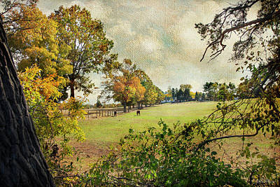 Photograph - Little Timber Ranch Berlin New Jersey by John Rivera
