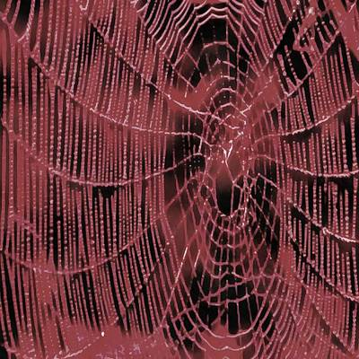 Painting - Living Coral Web by Taiche Acrylic Art