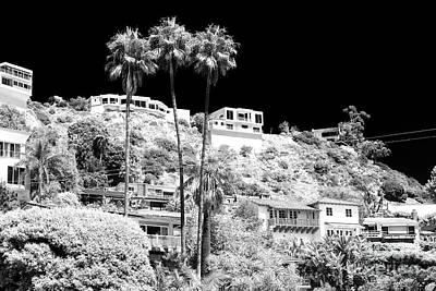 Photograph - Living In The Malibu Hills by John Rizzuto