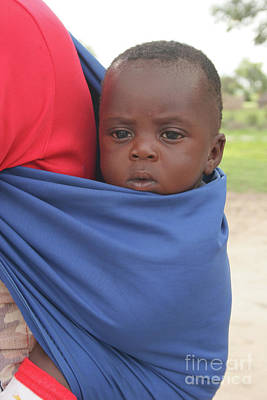 Photograph - Lizauli Baby-namibia by PJ Boylan