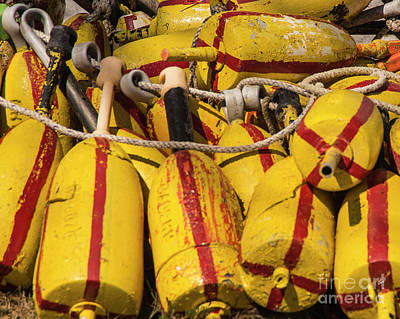 Photograph - Lobster Buoys by Alana Ranney