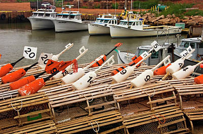 Trapped Photograph - Lobster Traps, Buoys And Moored by Don Johnston