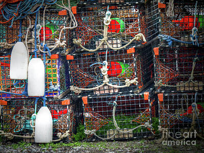 Photograph - Lobster Traps by Scott and Dixie Wiley