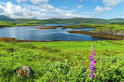 Photograph - Loch Dunvegan, Isle Of Skye by David Ross