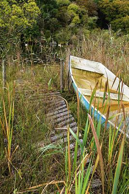 Photograph - Lochan side by Diarmid Weir