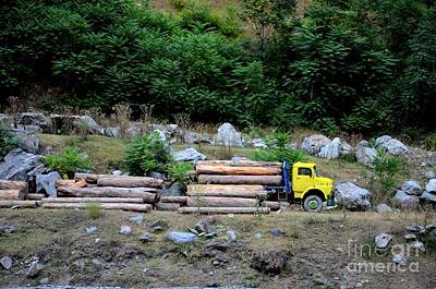 Guns Arms And Weapons - Loggers loading tree trunks onto yellow truck on mountainside Kaghan Pakistan by Imran Ahmed