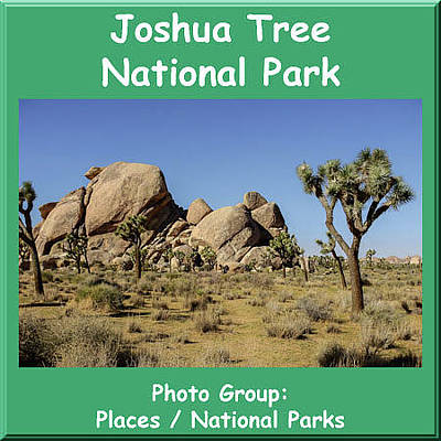 Photograph - Logo Joshua Tree National Park by NaturesPix