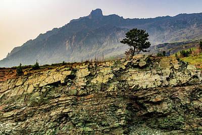 Wall Art - Photograph - Lone Tree In Rugged Landscape by Roslyn Wilkins