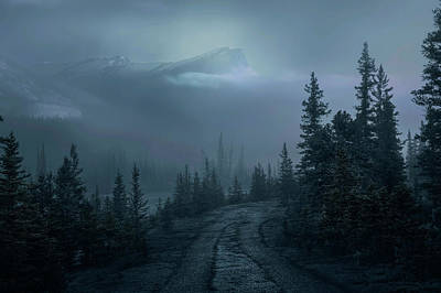 Photograph - Lonely Trails by Dan Jurak