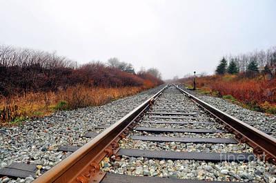 Photograph - Long And Lonely Tracks by Elaine Manley