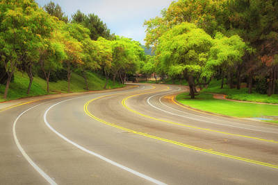 Photograph - Long And Winding Road 2 by Alison Frank