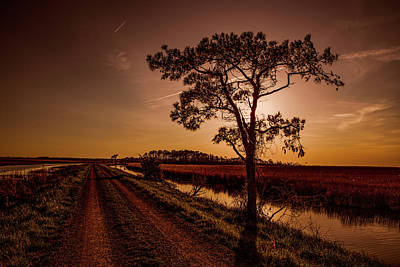 Photograph - Long Road Home by Pete Federico