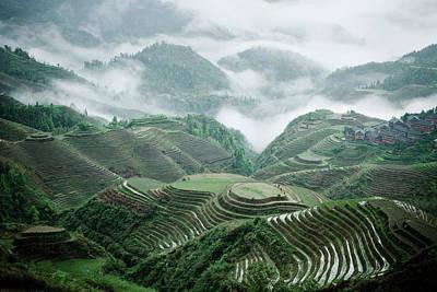 Field Photograph - Longji Rice Terraces by Jowena Chua