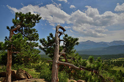 Photograph - Longs Peak From Trail Ridge Road by Ray Mathis