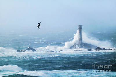 Photograph - Longships Storm Chaser by Terri Waters