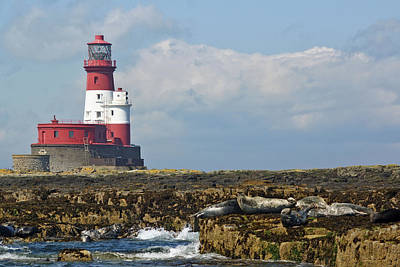Photograph - Longstone Lighthouse, Northumberland by David Birchall
