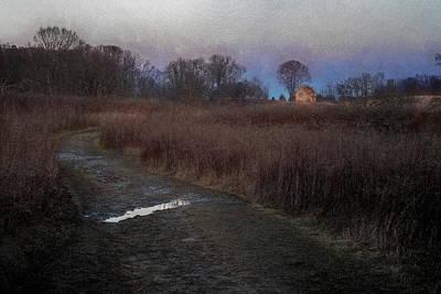 Photograph - Longwood Meadow by Tom Singleton