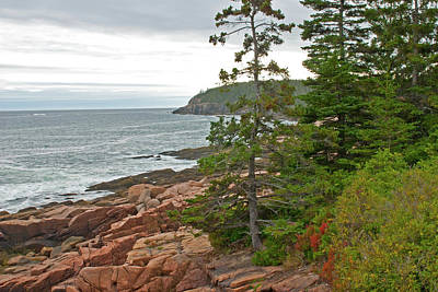 Photograph - Looking Out Towards Otter Cliffs by Paul Mangold