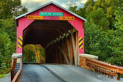 Photograph - Looking Through The Bistline Covered Bridge by Adam Jewell