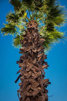 Mixed Media - Palm Tree by Krysten Brown