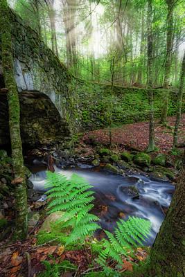 Photograph - Lost Bridge by Bill Wakeley
