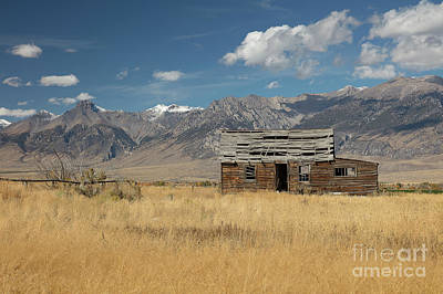Photograph - Lost River Cabin by Idaho Scenic Images Linda Lantzy