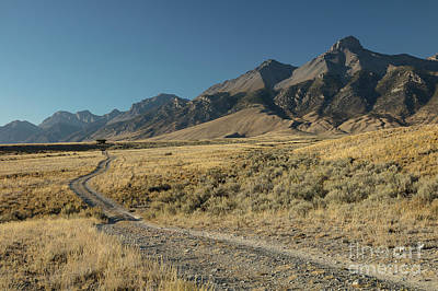Photograph - Lost River Range Road by Idaho Scenic Images Linda Lantzy