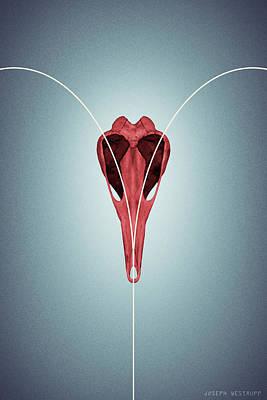 Photograph - Love From Ornithurae - Geometric Abstract Bird Skull Heart by Joseph Westrupp