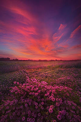 Photograph - Love Is All There Is by Phil Koch