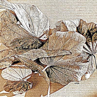 Photograph - Lovely Leaves Litterfall  by VIVA Anderson