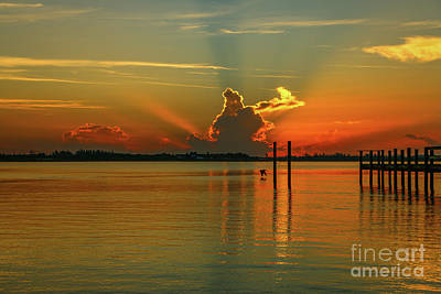 Photograph - Low Flying Pelican Sunrise by Tom Claud