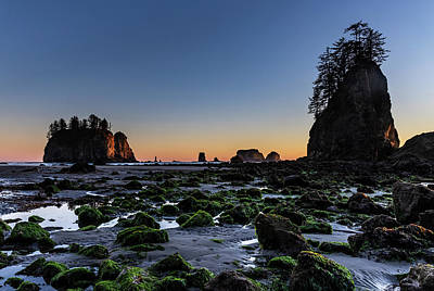 Photograph - Low Tide by Ed Clark
