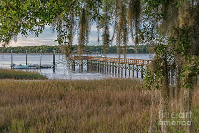 Photograph - Lowcountry Paradise - Salt Life by Dale Powell