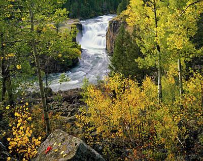 Photograph - Lower Mesa Autumn by Leland D Howard