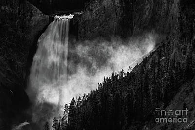 Photograph - Lower Yellowstone Falls by Doug Sturgess