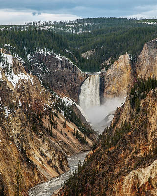 Photograph - Lower Yellowstone Falls by Matthew Irvin